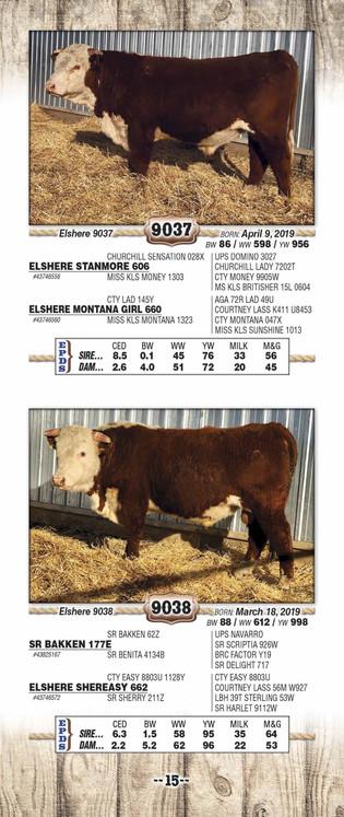 Elshere 2021 catalog WEB_Page_17.jpg