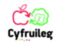 Cyfruileg-logo-cmjn.jpg