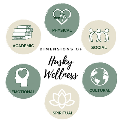 Dimensions of Wellness Circles.png