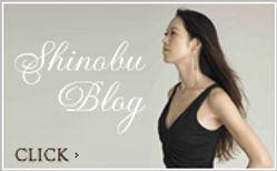 blog_btn_off.jpg