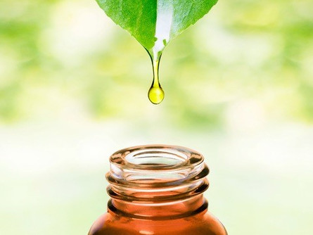 Using Essential Oils on the Homestead