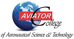 179586 Aviator Sign-1_edited.jpg
