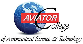 179586 Aviator Sign-1_edited.jpg