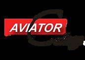Aviator College logo