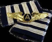 Aviation Degree: Aviator College degree program.