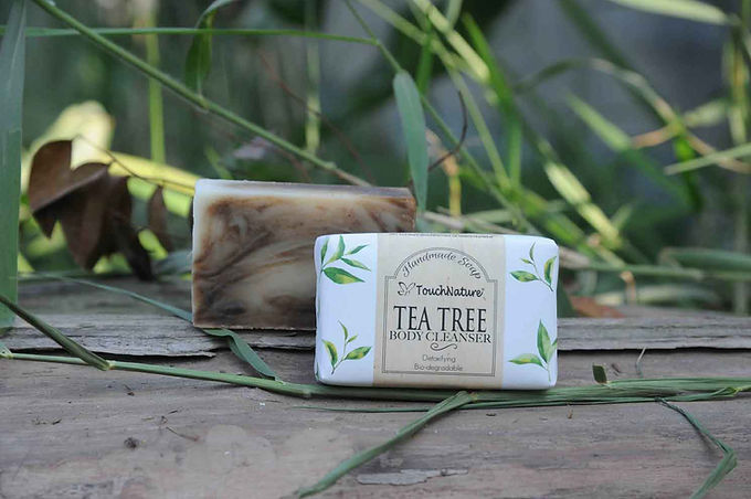 Covid-19_2pcs 100gm Tea Tree Soap_Touchn