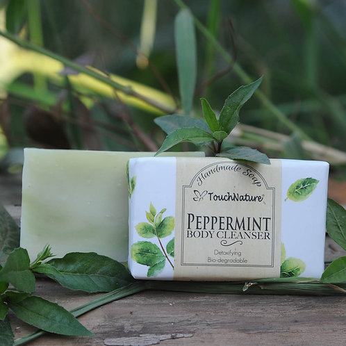 2pc 100gm Peppermint Soap