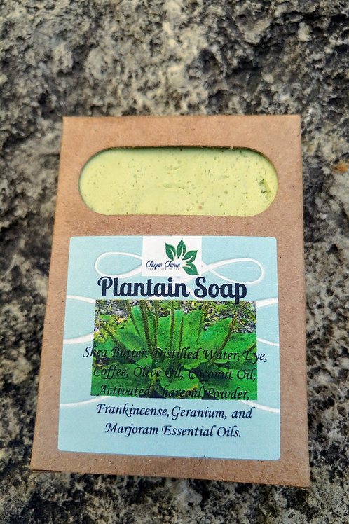 Plantain Hand and Body Soap