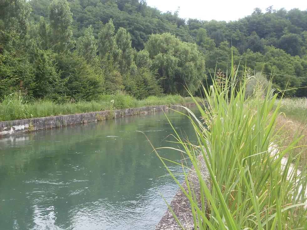 canale del bosco fino a pederiva (1).JPG