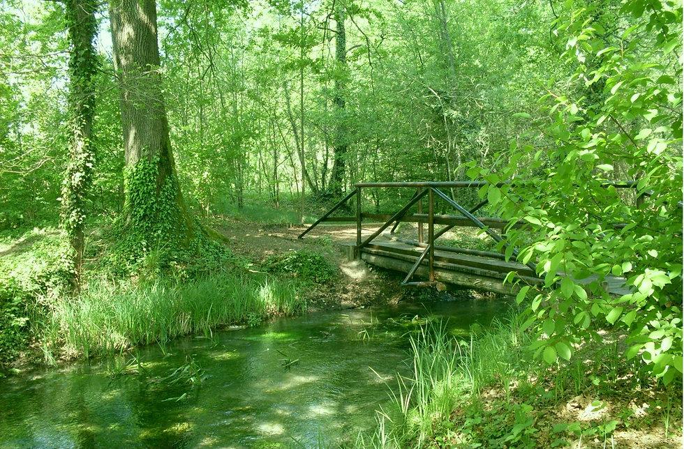 ponte sul primissimo tratto di sile.jpg