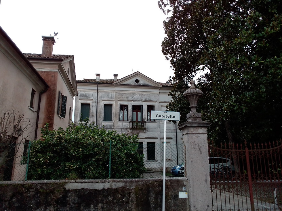 VILLA TIRONI (2).jpg