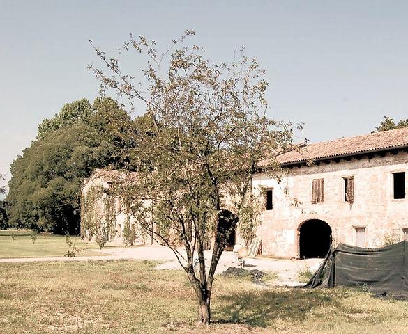 CA LEONCINO - FOTO DI GIANNI DESTI_modif