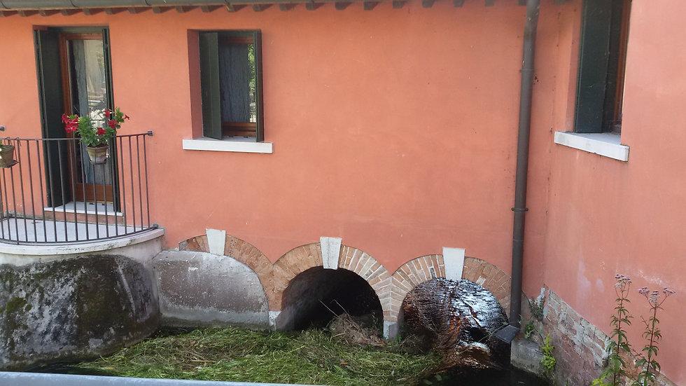 LIMBRAGA A FIERA (3).jpg