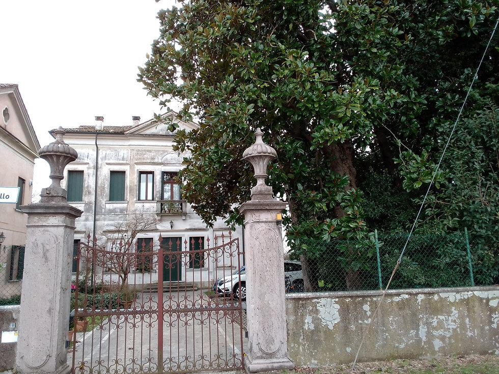 VILLA TIRONI (1).jpg