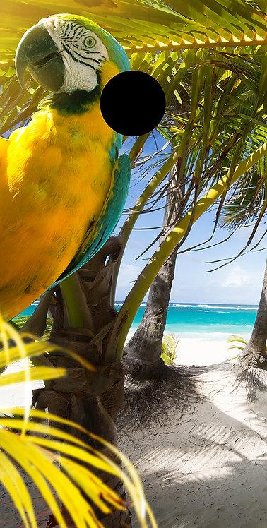 Beach 39