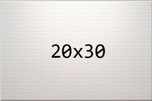 20 x 30 Canvas