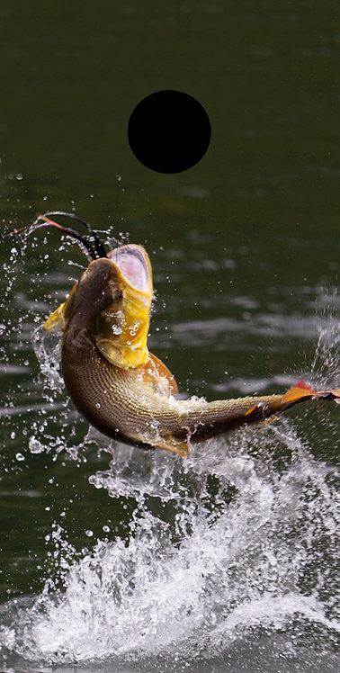 Hunting & Fishing 4