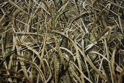 Set of 4 -Mossy Oak Shadow Grass