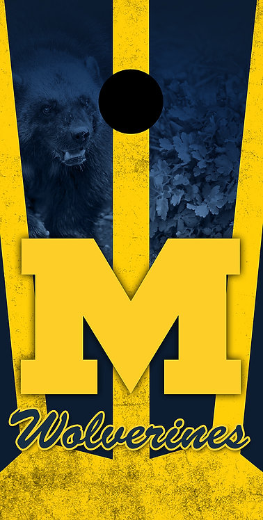 MICHIGAN UNIVERSITY 10