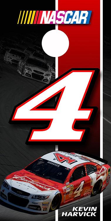 NASCAR 6