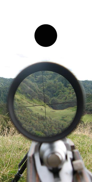 Hunting & Fishing 6