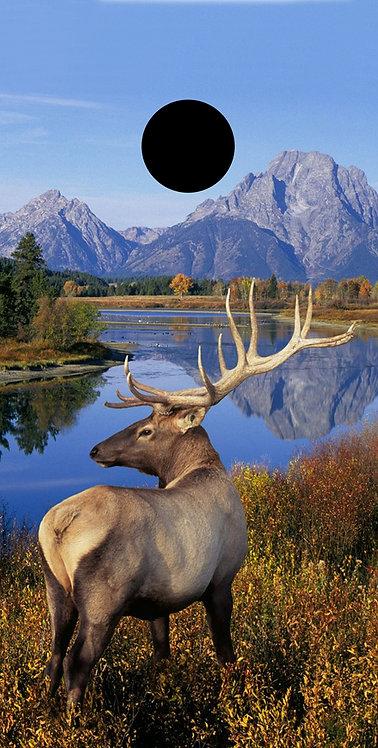Hunting & Fishing 28
