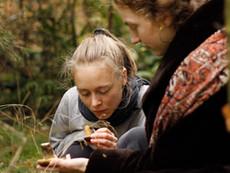 BESAT - Vi søger underviser til Bæredygtighed og Naturformidling på Vestjyllands Højskole