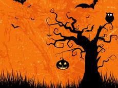 Aflyst! Halloween i Forundringens Have 16. oktober