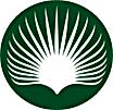 ramo buriti1.png
