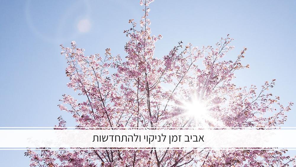 , היהדות....האביב זמן מופלא לניקוי ולהתחדשות על פי הרפואה הסינית-גליה יהודה-הבית לנטורופתיה