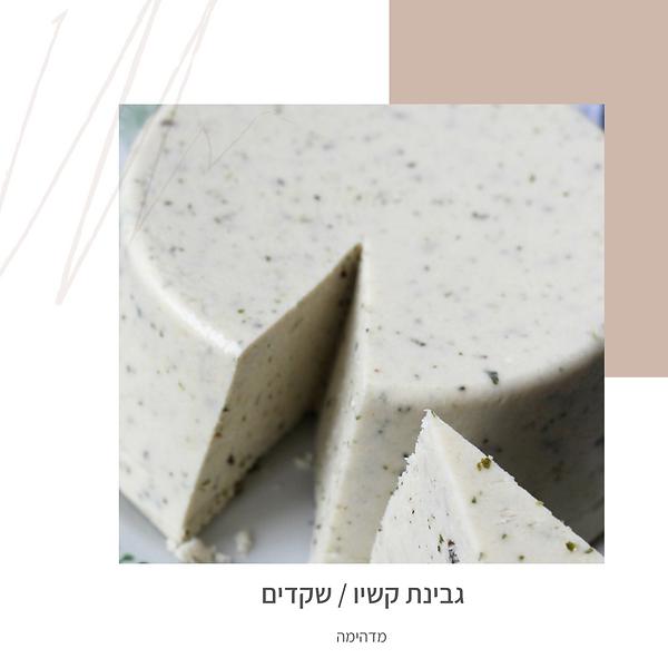גבינת קשיו/שקדים-גליה יהודה וותיקת הנטורופתים-הבית לנטורופתיה במודיעין
