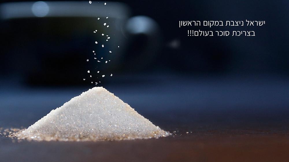 -כמה סוכר אנחנו אוכלים ביום-גליה יהודה-הבית לנטורופתיה במודיעיןן