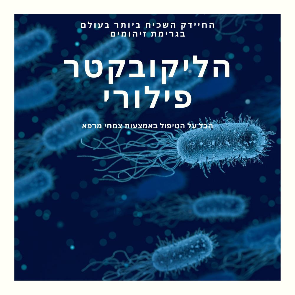 הליקובקטר פילורי-טיפול בצמחי מרפא-גליה יהודה הבית לנטורופתיה במודיעין