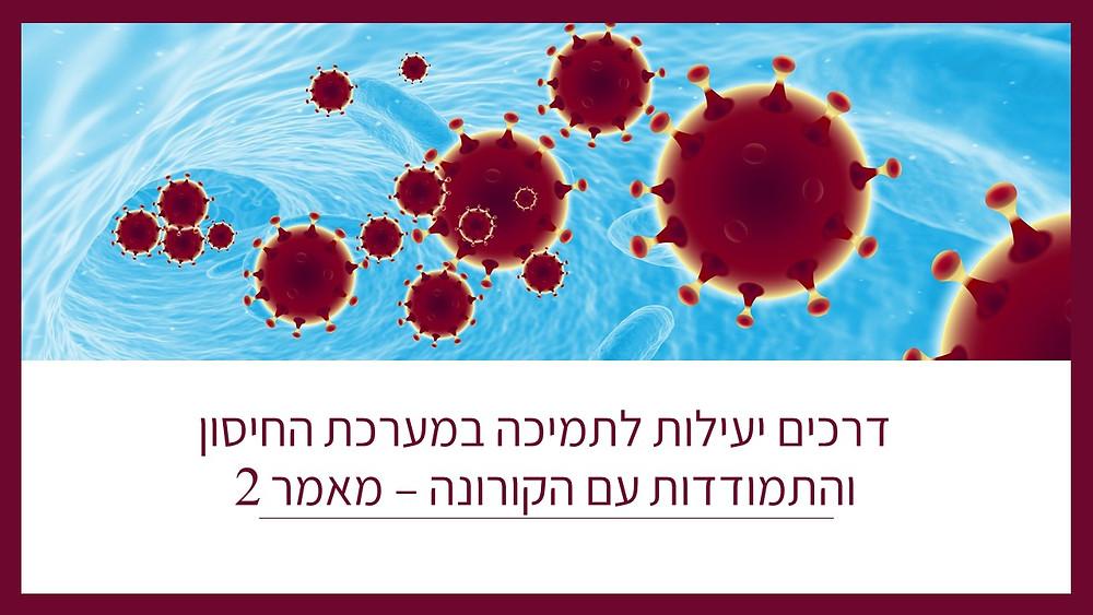 דרכים יעילות לתמיכה במערכת החיסון והתמודדות עם הקורונה-מאמר 2-גליה יהודה-הבית לנטורופתיה