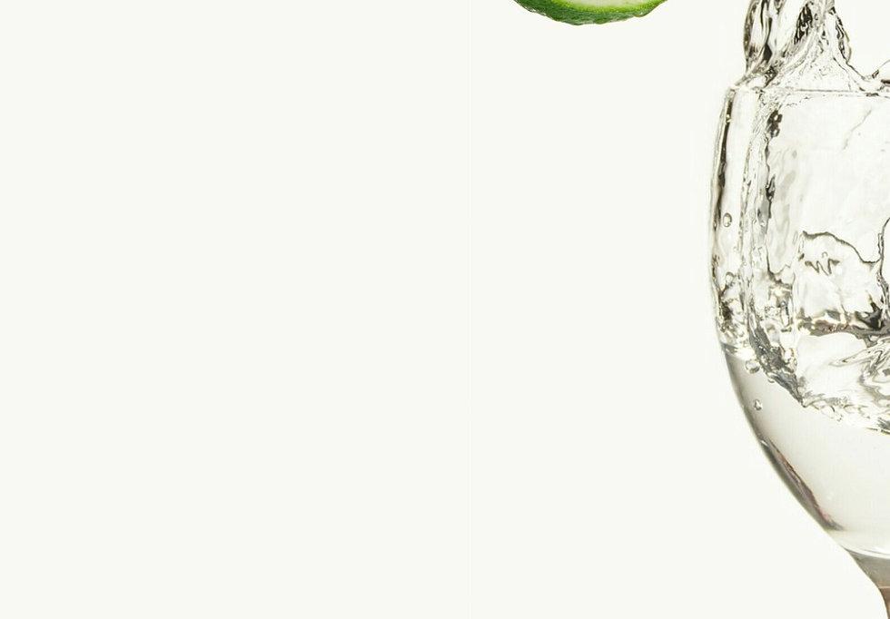 lemon-4489198_1920.jpg