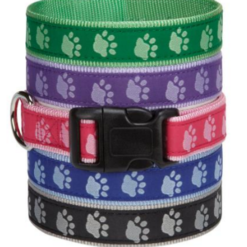 CC TWO TONE PAWPRINT COLLAR