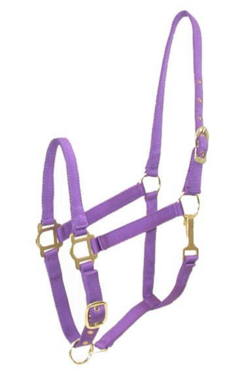 GATSBY ADJUSTABLE NYLON HALTER W/SNAP