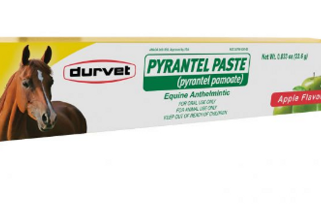 PYRANTEL PASTE EQUINE WORMER