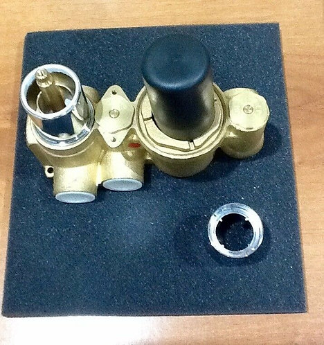 Concealed Twin & Triple Thermo Shower Valve with Diverter