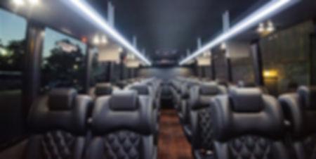 Reston Exeutive Minibus Shuttle Bus