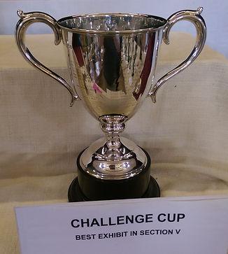 bhs challenge cup.jpg