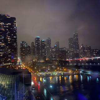 View from the Centennial Wheel in downtown Chicago.  Photo by Gina Duncan