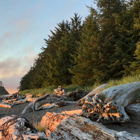 Pacific Northwest Tales Part II: Just Say Yes to the Pacific Northwest