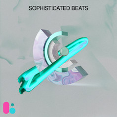 Sophisticated Beats-LSNG111