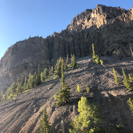 Pacific Northwest Tales Part I: Reveling in the View at Grand Teton