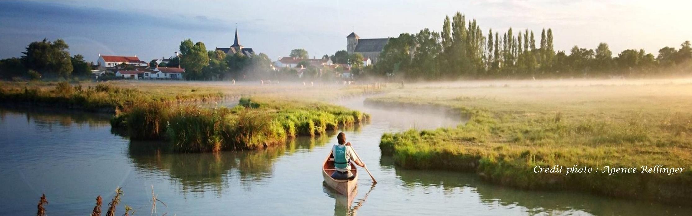 image-canoe-marais-matin