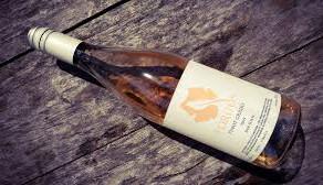 Pinot Grigio, un blanco con mucho carácter