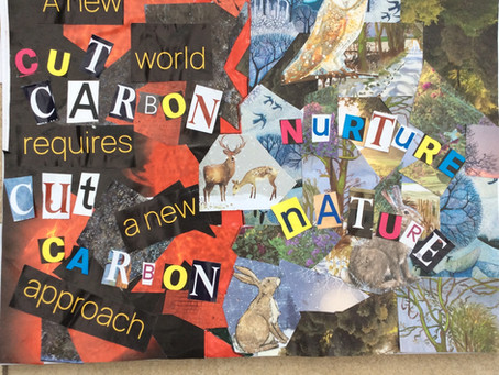 Eco-Themed Collage Gallery