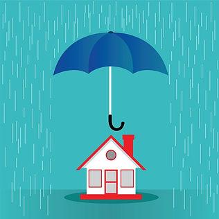 Umbrella pic 4.jpg