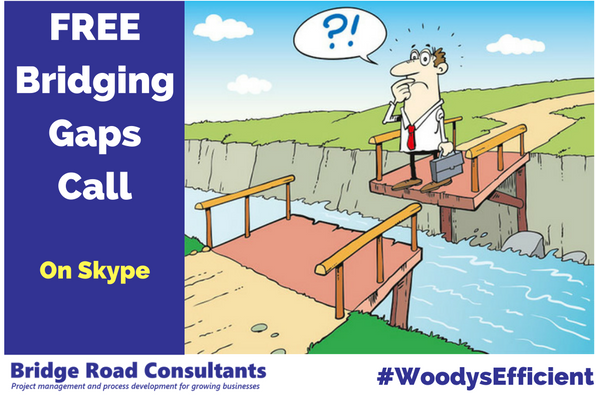 Skype - Bridging Gaps
